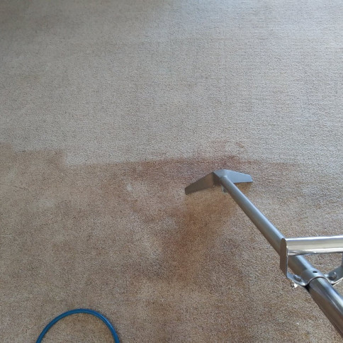 Carpet Cleaning Portland, OR