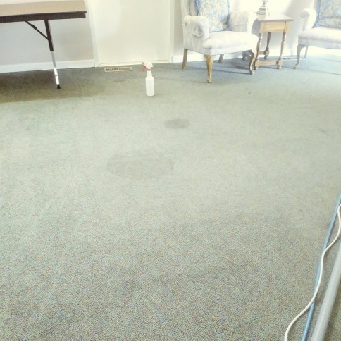 carpet cleaners portland or