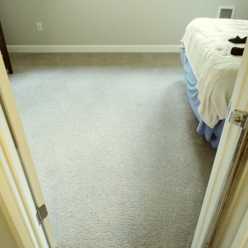 carpet odor removal portland or